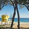Oneloa - Big Beach Makena Maui Hawaii by Sharon Mau