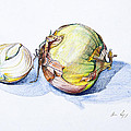 Onions by Aaron Spong