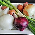 Onions by Patricia Holmes