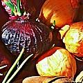 Onions by Sarah Loft
