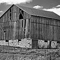Ontario Barn Monochrome by Steve Harrington