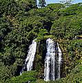 Opaekaa Falls In Kauai by Catherine Sherman