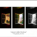 Open Cabin Window Trio by Julie Dant