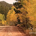 Open Road 4 by Ashley M Conger