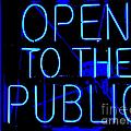 Open To The Public by Ed Weidman