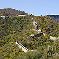 Open View Of The Great Wall 612 by Terri Winkler