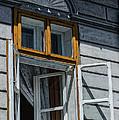 Open Window by Dobromir Dobrinov
