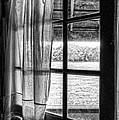 Open Window by Nikolyn McDonald