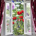 Open Window View Onto Wild Flower Garden by Simon Bratt Photography LRPS