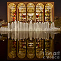Opera House Reflections by Susan Candelario