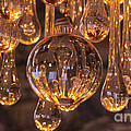Opulent Luminescence by Putterhug  Studio