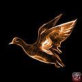 Orange American Wigeon - 7675 F - Bb by James Ahn