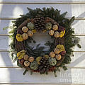 Orange And Artichoke Wreath by Teresa Mucha
