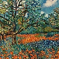 Orange And Blue Flower Field by Kendall Kessler
