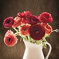Orange And Red Ranunculus Flowers by Jan Bickerton