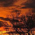 Orange And Yellow Sunset by Gene Cyr