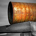 Orange Appeal - Rusty Old Can by Gary Heller