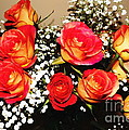 Orange Apricot Roses With Oil Painting Effect by Rose Santuci-Sofranko