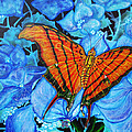 Orange Butterfly by Debbie Chamberlin