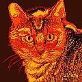 Orange Cat by Marlene Watson