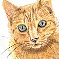 Orange Cat With Green Eyes by Kate Sumners
