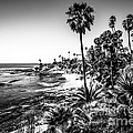 Orange County California In Black And White by Paul Velgos