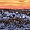 Orange Dawn by Michael Thomas