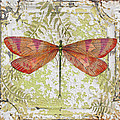 Orange Dragonfly On Vintage Tin by Jean Plout
