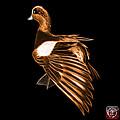Orange Fractal Wigeon 7702 - Bb by James Ahn