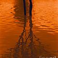 Orange Glow by Heather Kirk