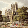 Orange Grove, From Bath Illustrated by John Claude Nattes
