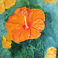 Orange Hibiscus by Sandy McIntire