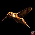Orange Hummingbird - 2054 F by James Ahn
