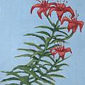 Orange Lilies by Wade Clark