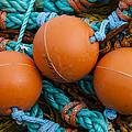 Orange Net Floats by Carol Leigh