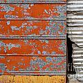 Orange Paint by Ashley M Conger