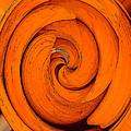 Orange Peal by David Lee Thompson