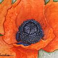 Orange Pop Watercolor by Kimberly Walker