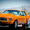 Orange Racing Mustang by Michael Moriarty