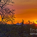Orange Sun Setting by Brian Lambert