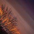 Orange Sunrise by James Truett