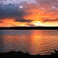Orange Sunset by Athena Mckinzie