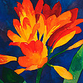 Orange Tropical Flowers by Cory Behara