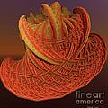 Orange Weave by Deborah Benoit
