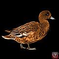 Orange Wigeon Art - 7415 - Bb by James Ahn