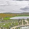 Orangerie by Elvis Vaughn