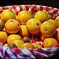 Oranges Plus More by Linda Phelps
