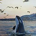 Orca by Rayna DeHoog