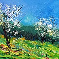 Orchard 564150 by Pol Ledent