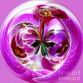 Orchid Orb I by Jeff McJunkin
